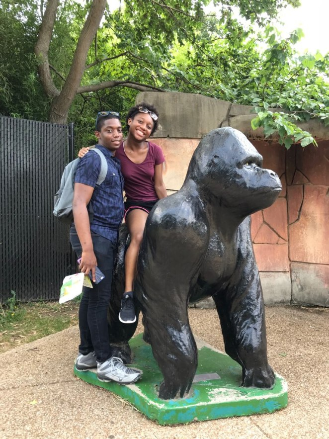 zoo picture 2 2018