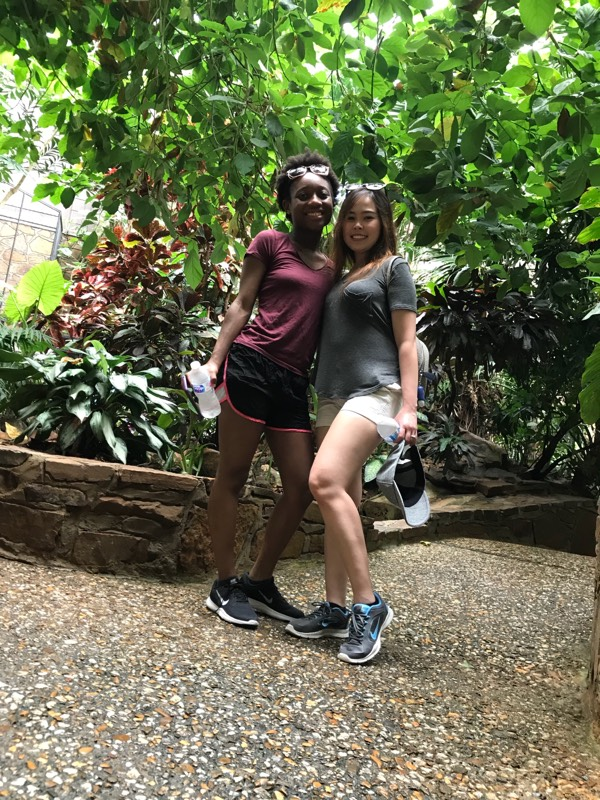 zoo picture 4 2018